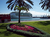 Cruise-Ship-Harbor-Canary-Islands.jpg