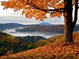 new-england-foliage-2018.jpg