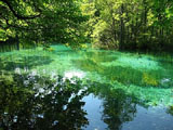 plitvice-lakes-national-park-water.JPG